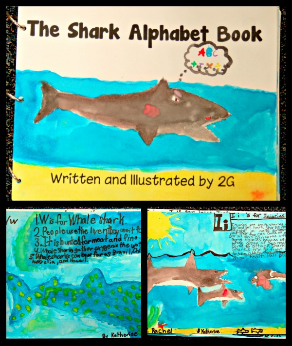 Shark Alphabet Book