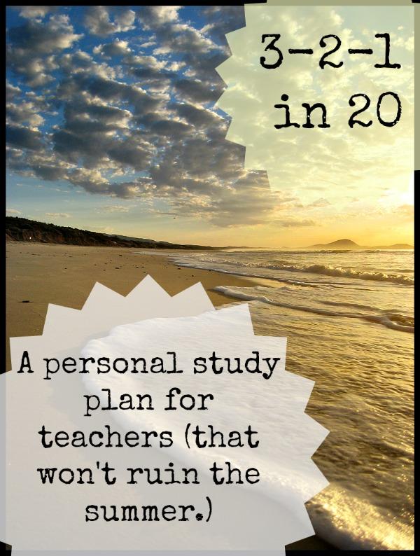 teacher professional development essays