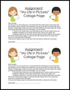 Life In Pictures Cover Sheet