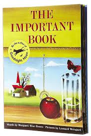 The Important Book Class Book Idea